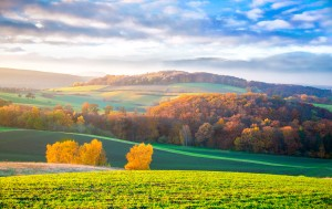 07 Herbstlandschaft