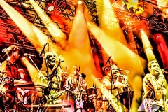 07_Mittelrhein-Musikfestival_276_C